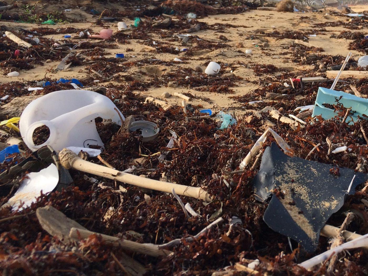 Waste beach